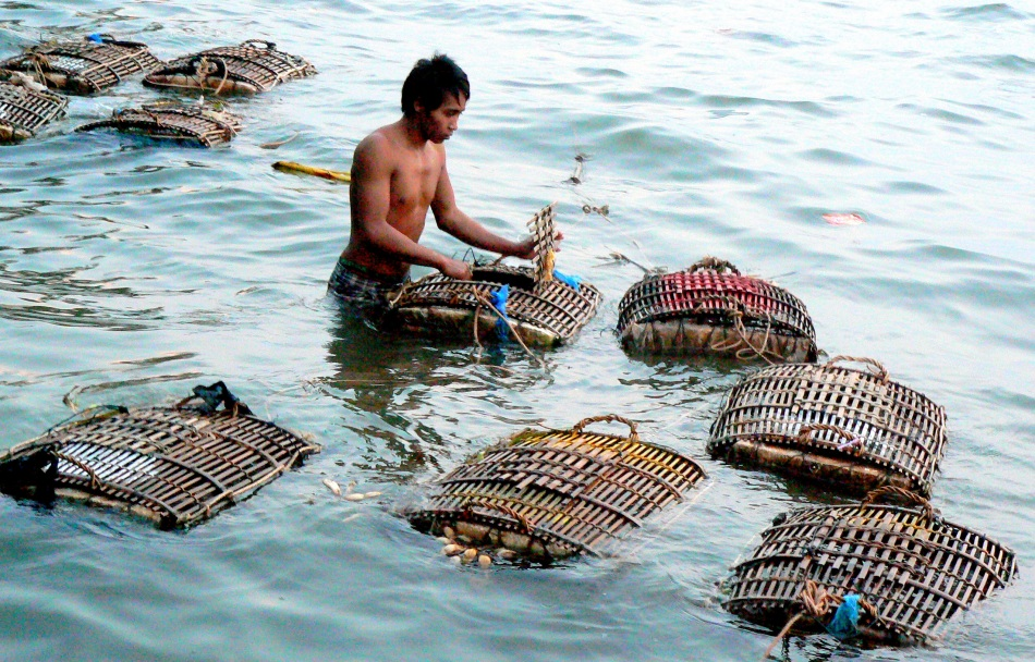 Crab Keeper Cages.