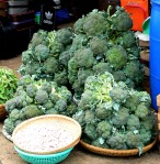 broccoli and lots of it